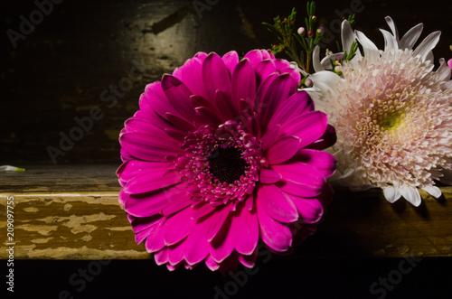 Fotobehang Gerbera Flores, arreglos florales