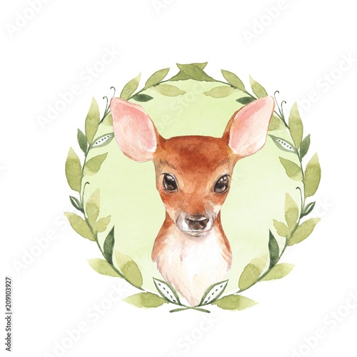 Baby Deer. Hand drawn cute fawn. Watercolor illustration - 209103927