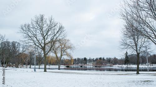 Foto Murales Invierno en Wisconsin
