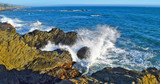 Waves crashing on N. California coast