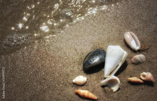 Fotobehang Zen Stenen Seashell and seastone