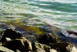 Kraina lasów jezior i gór - 209128307