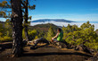 Leinwanddruck Bild - Man sitting on the stone watching a volcanic landscape of pine forest with a Caldera de Taburiente on background, island of La Palma, Canary Islands, Spain