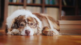 A dog in glasses is dozing about a pile of books on the floor in the library - 209135966