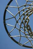 Basketball Net - 209147174