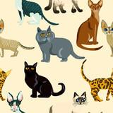 Cartoon cats seamless pattern,  Illustration  breeds of cats - 209165946