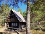 Bungalow w sosnowym lesie przy plaży - wakacje w drewnianym domku