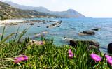 Entspannung, Ferien, Reise, Urlaub in Griechenland: Palmenstrand von Preveli auf Kreta :) - 209175599