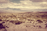Desert landscape in Bolivia - 209178335