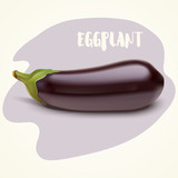 Vector illustration of eggplant - 209180101