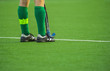 man field hockey player on the grass green background