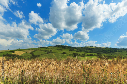 Fotobehang Landschappen Countryside landscape, cultivated fields and blue sky with clouds