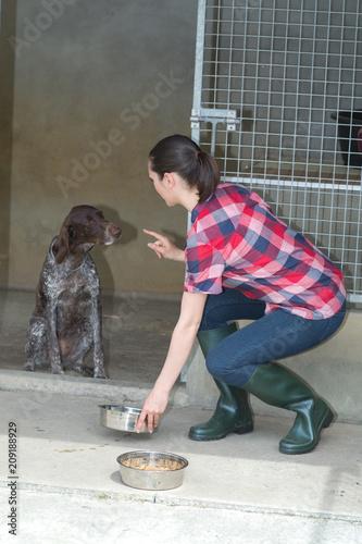 Poster animal shelter volunteer feeding the dogs