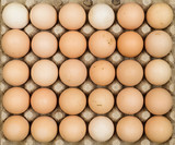 Overhead view of free range organic chicken eggs in tray. Some eggs are dirty. - 209189506