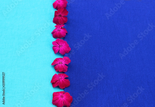background with vibrant colors and pink flowers