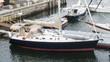Sailboats docked inn Rockland Maine