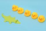 Challenge concept, rubber ducks are facing crocodile. - 209206373