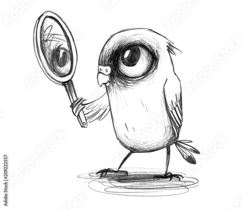 Fototapeta Selbstverliebter Wellensittich blickt in den Spiegel