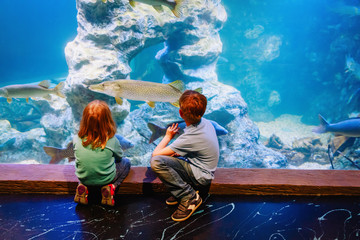 kids-boy and girl- watching fishes in aquarium