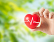 health, medicine, people and cardiology concept - close up of hand holding small red heart with cardiogram over green natural background