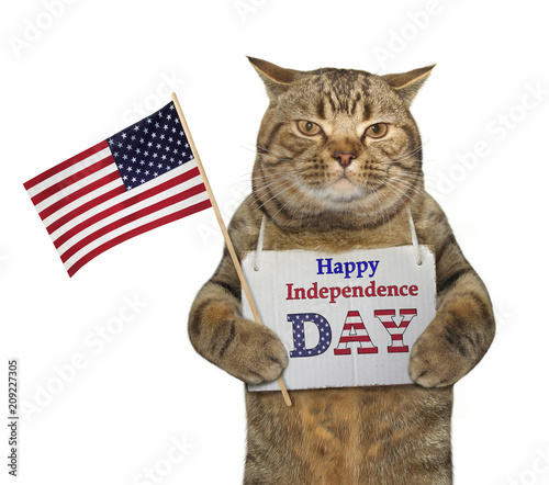 """The cat holds the American flag with a sign hanging around his neck. It says """" Happy independence day """"."""