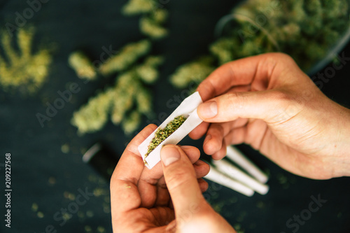 Leinwanddruck Bild Rolled joint cannabis weed in hand of man Cones bud of marijuana flowers cannabis in hand of man black background