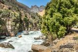 Scenic river Sequoia National park