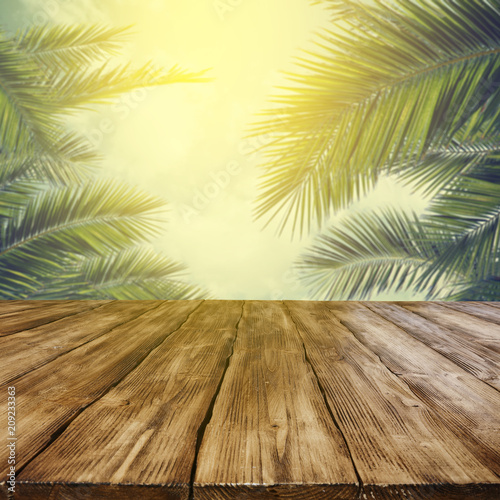 Leinwanddruck Bild table background of free space and mood landscape of palms