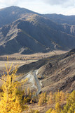 Lonely road in the mountains of the Altai