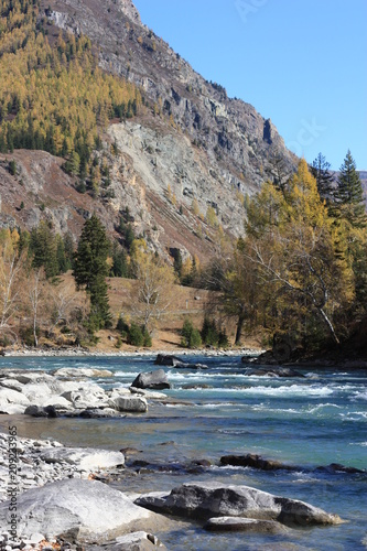 Fotobehang Bergrivier In autumn on the bank of the mountain river Katun