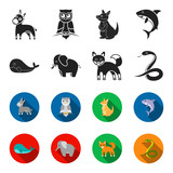 Whale, elephant,snake, fox.Animal set collection icons in black,flet style vector symbol stock illustration web.