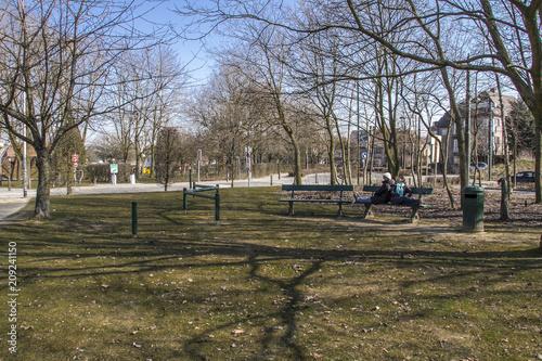 Foto Murales Parque em Bruxelas