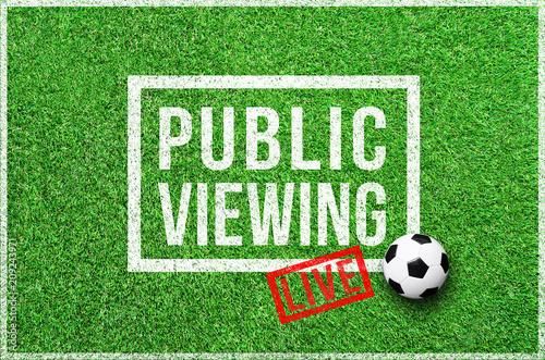 Fußball - Public Viewing Live - 209243971