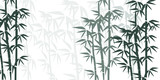 Bamboo illustration. Design for prints, asian spa and massage, cosmetics package, materials.