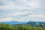 soft colors forest mountains nature landscape