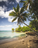 Traumhafter Strand auf Oahu, Hawaii - 209260716