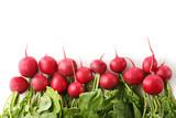 Red radishes on white background - 209267349