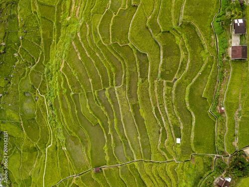 Aluminium Rijstvelden Top down aerial view of rice terraces in the Bauaue area of the Philippines