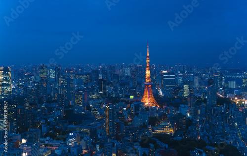 Aluminium Tokio 東京風景・大都会の夜景