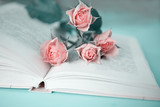Several pink roses on an open book, on a mint background - 209293314
