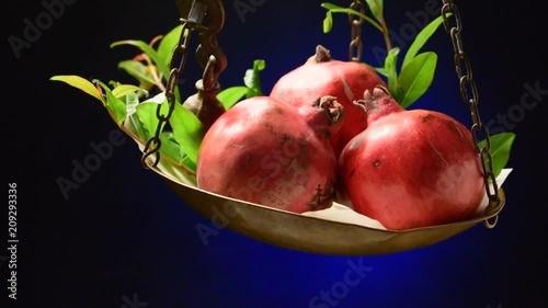 Punica granatum Melograni Гранат обыкновенный Granatepli video Granatapfel Ροδιά Pomegranate Melograno Granado