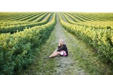 Cute young blonde girl spends time in a picturesque field with a bunch of pions in her hands - 209310745