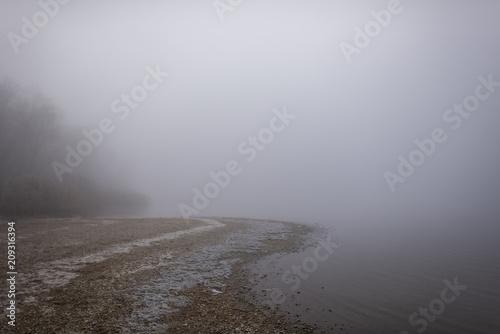 Seeufer im Nebel 1