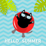 Hello Summer. Black cat floating on red air pool water circle. Lifebuoy. Palm tree leaf. Cute cartoon relaxing character. Sunglasses. Water with waves. Flat design.