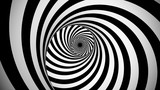 Optical black and white spinning illusion © klss777