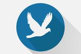 Icono azul de una paloma.