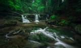 Wasserfall in grüner Natur - 209363533
