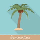Collection of Summer Holiday Items, Flat Design with long shadow in Bright Colors: Palm Tree with Coconuts in Front view