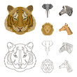 Tiger, lion, elephant, zebra, Realistic animals set collection icons in cartoon,outline style vector symbol stock illustration web.