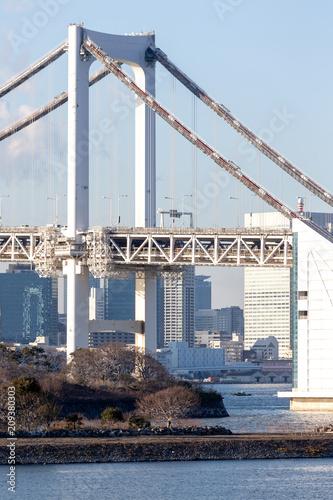 Aluminium Tokio Tokyo Bay with Rainbow Bridge in Odaiba city skyline